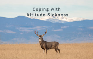 coping with altitude sickness in Colorado while hunting
