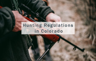 Hunting Regulations in Colorado