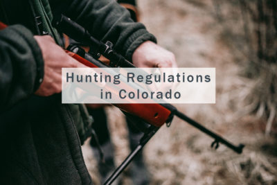 Hunting Regulations in Colorado