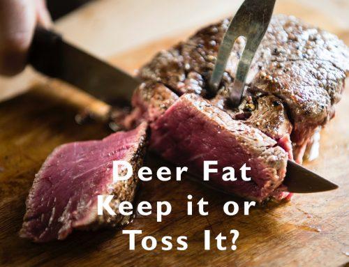 Deer Fat — Keep It or Toss It?