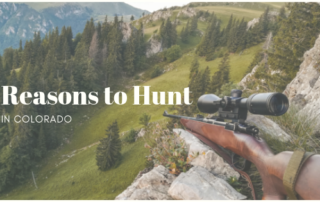 hunting in Colorado