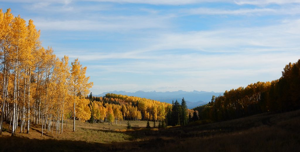 fall hunting in Colorado