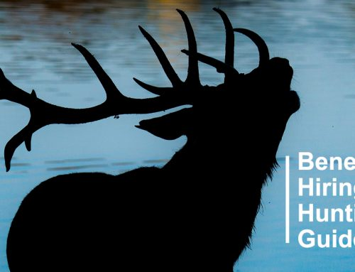 4 Benefits to Hiring a Hunting Guide in Colorado