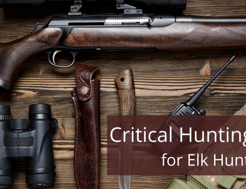 Critical Hunting Gear for Elk Hunts