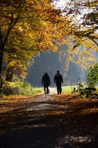 Two people taking a walk outside under fall-colored trees begin their hunting fitness journey.