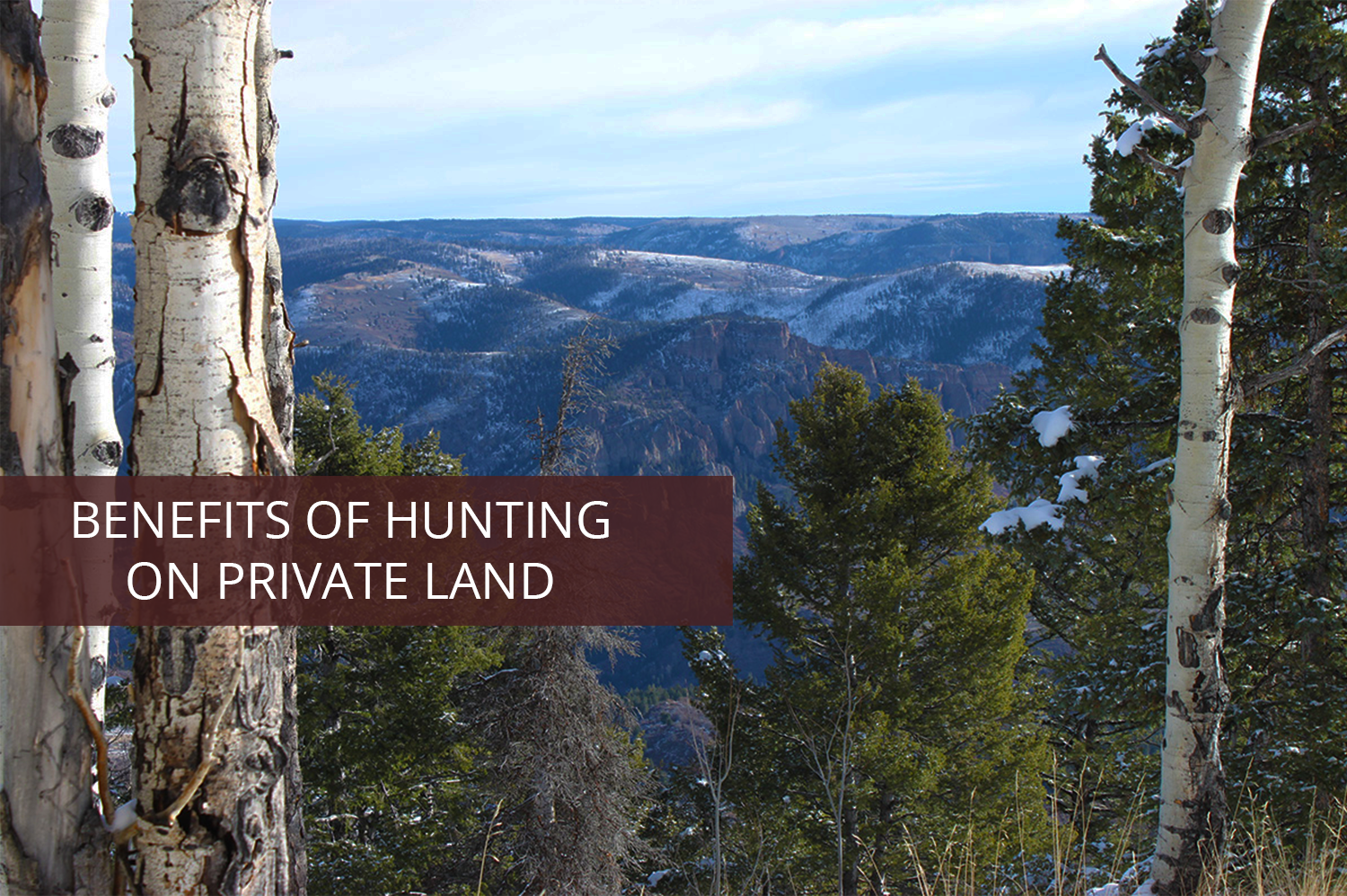 Soap Mesa Outfitters hunting on private land; view of the Rockies.