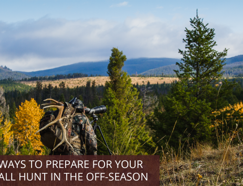 Ways to Prepare for Your Fall Hunt in the Off-Season